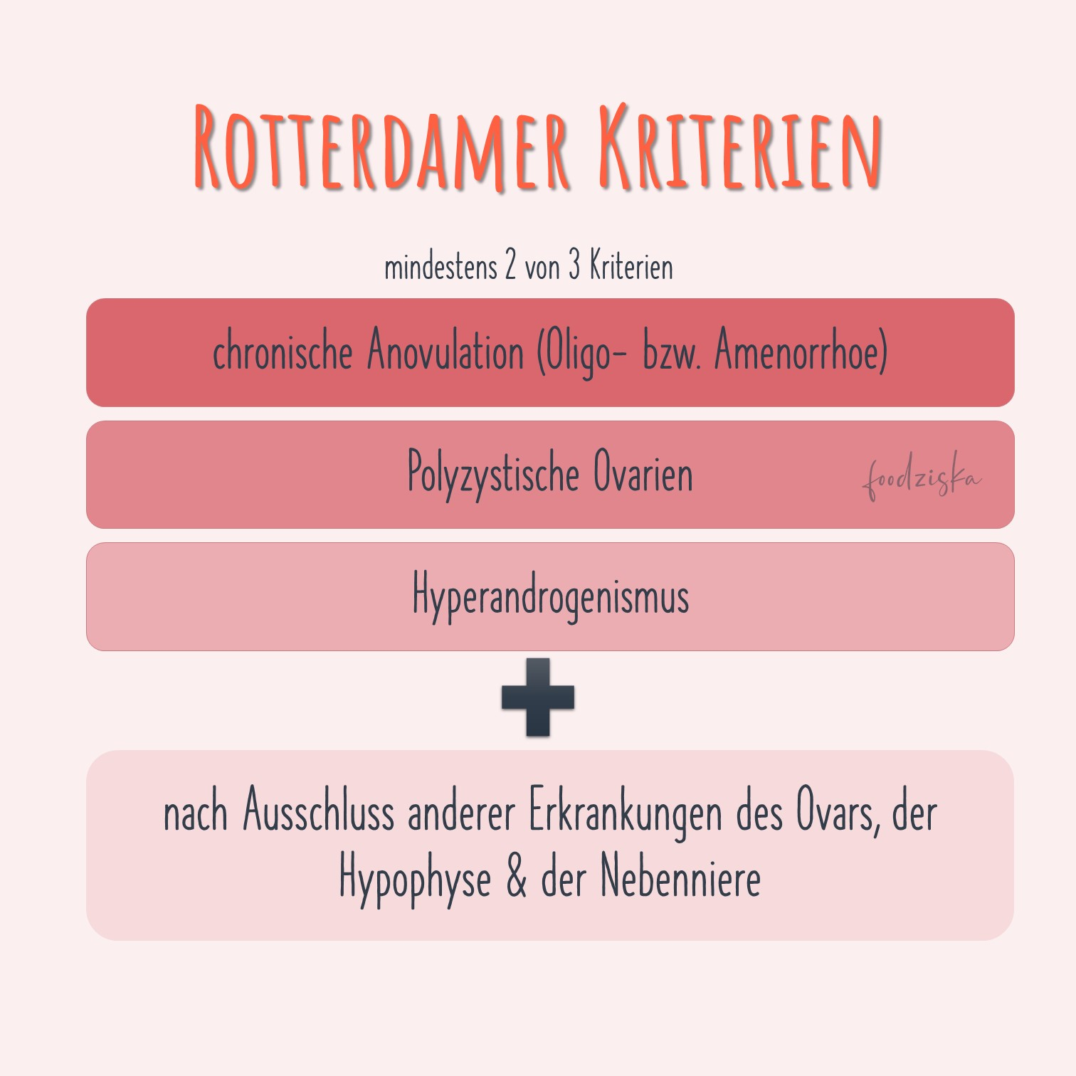 Rotterdammer Kriterien